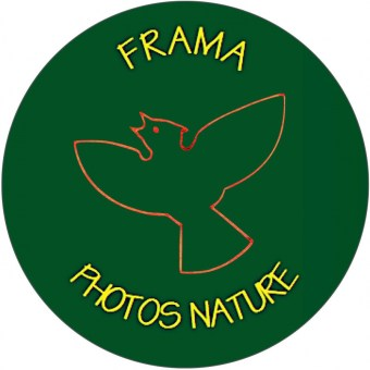 022_frama_photo_belge_logo